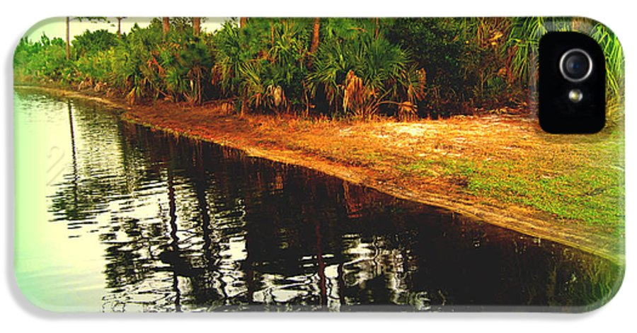 Florida IPhone 5 Case featuring the photograph Florida Landscape by Susanne Van Hulst