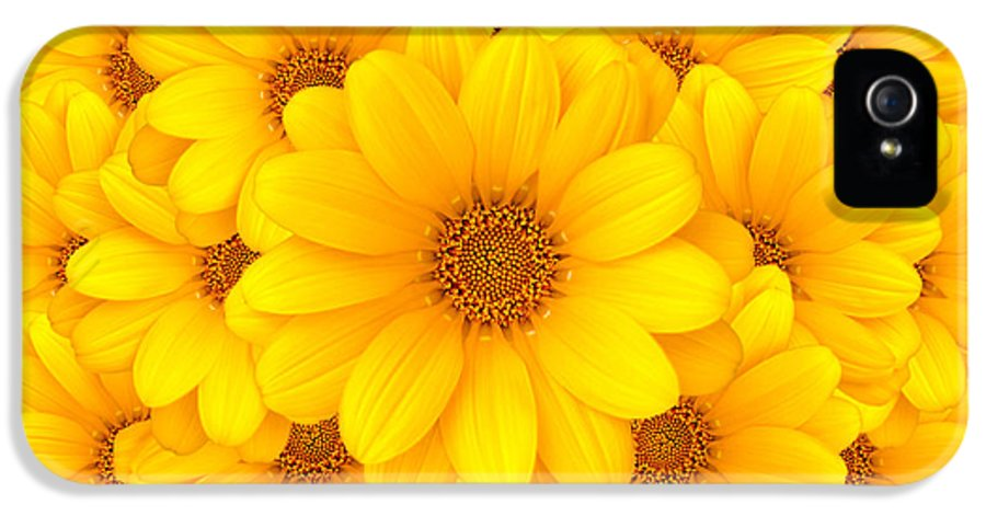 Background IPhone 5 Case featuring the photograph Flower Background by Carlos Caetano
