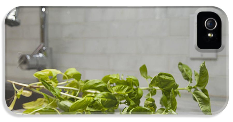 Toronto IPhone 5 Case featuring the photograph Fresh Basil Herb Leaves From The Garden by Marlene Ford