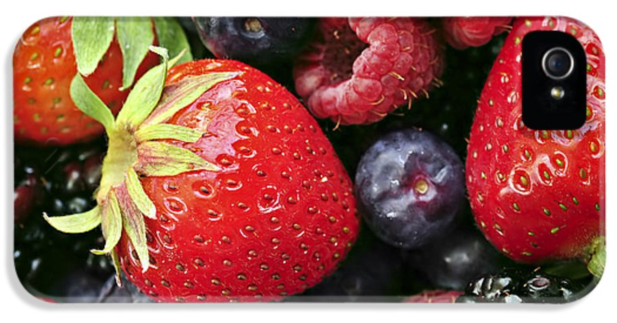 Berry IPhone 5 Case featuring the photograph Fresh Berries by Elena Elisseeva