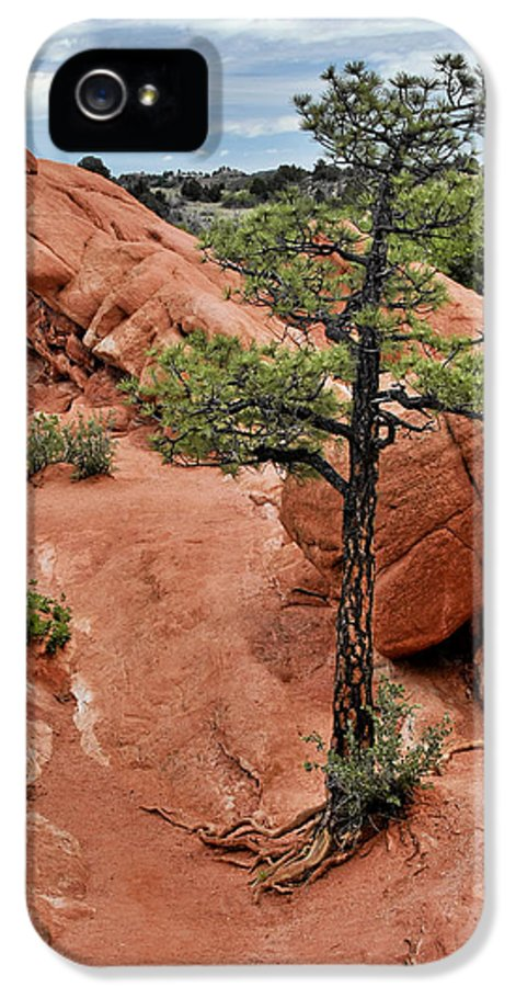 Natural IPhone 5 Case featuring the photograph Garden Of The Gods - The Name Says It All by Christine Till