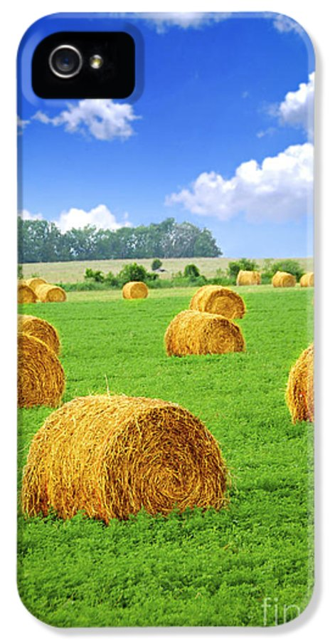Agriculture IPhone 5 Case featuring the photograph Golden Hay Bales In Green Field by Elena Elisseeva
