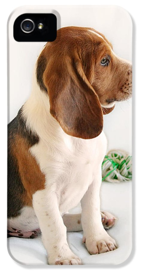 Beagles IPhone 5 Case featuring the photograph Good Ol' Snoopy by Christine Till