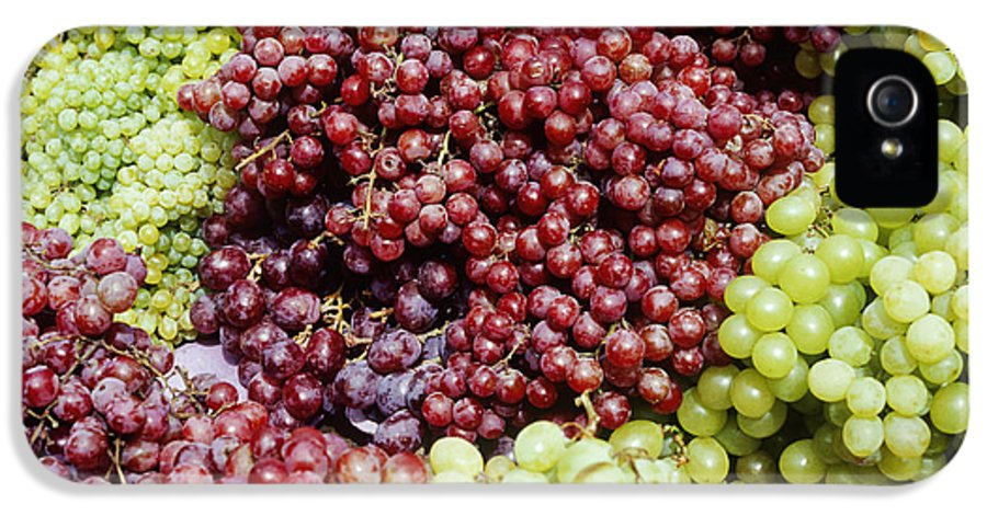 Abundance IPhone 5 Case featuring the photograph Grapes At A Market Stall by Jeremy Woodhouse