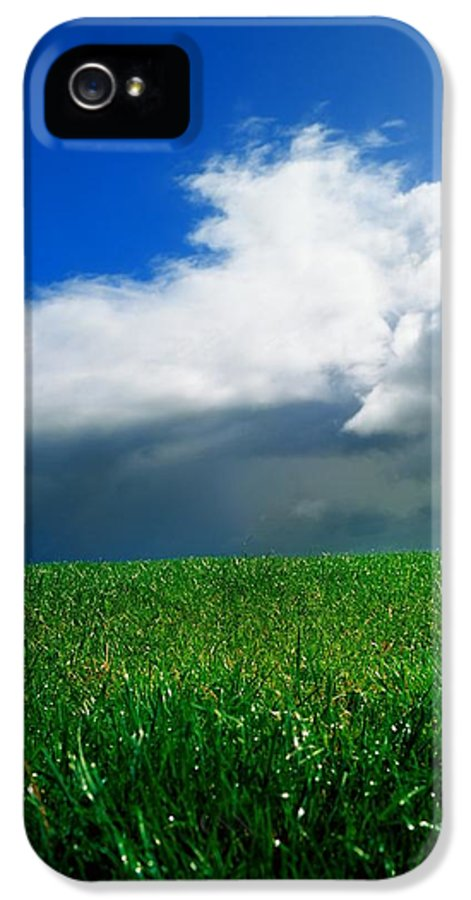 Blue Sky IPhone 5 Case featuring the photograph Grassy Field, Ireland by The Irish Image Collection