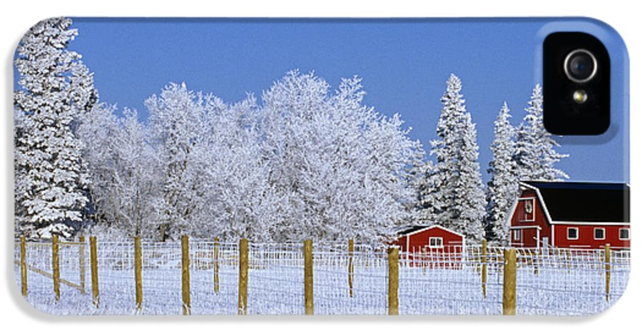 Barns IPhone 5 Case featuring the photograph Hoarfrost On Trees Around Red Barns by Mike Grandmailson