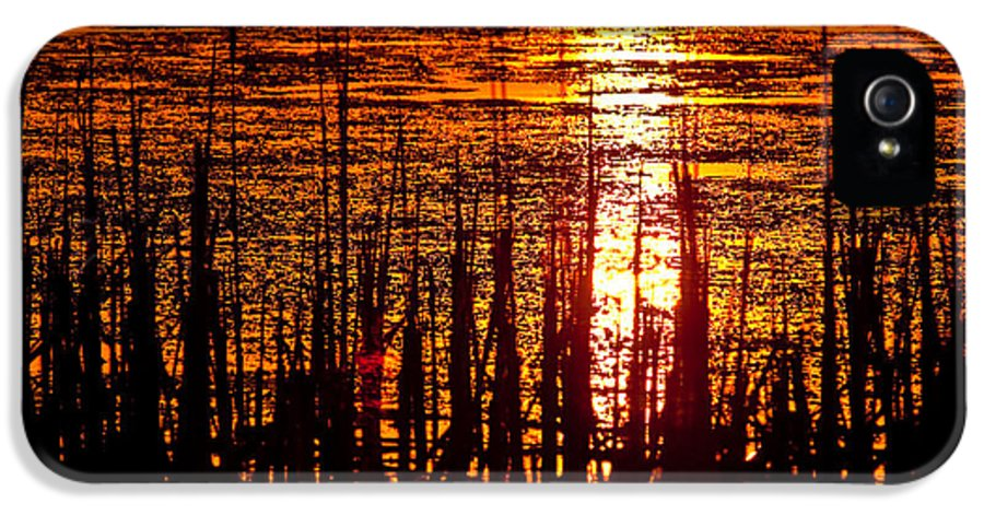 Horicon IPhone 5 / 5s Case featuring the photograph Horicon Marsh Sunset Wisconsin by Steve Gadomski