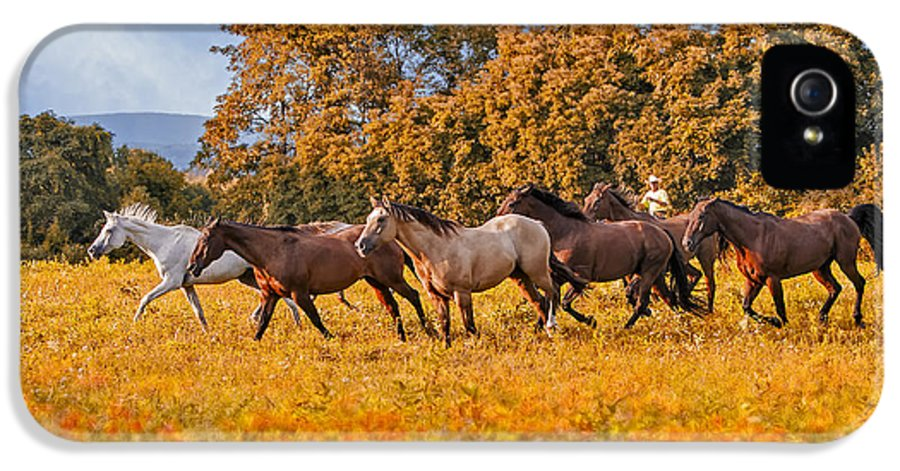 Horse IPhone 5 Case featuring the photograph Horses Running Free by Susan Candelario