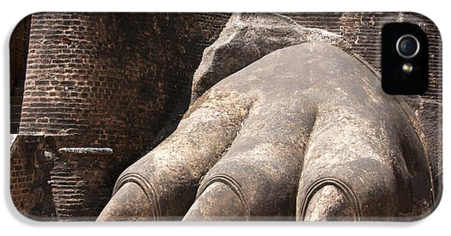 Ancient IPhone 5 Case featuring the photograph Lion's Paw Sigiriya by Jane Rix