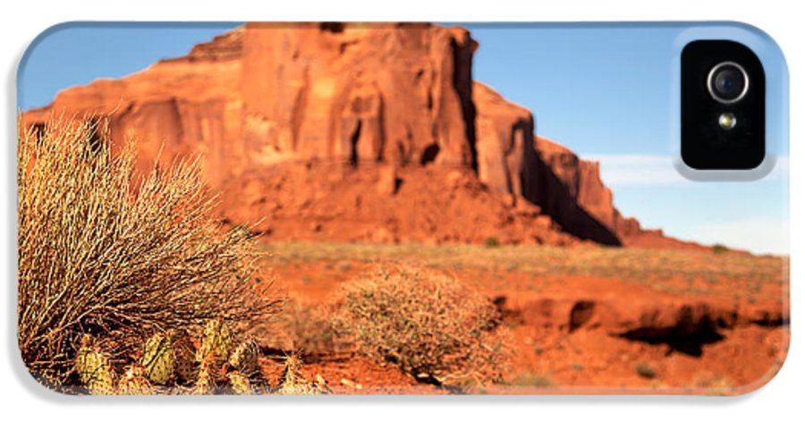 America IPhone 5 Case featuring the photograph Monument Valley Cactus by Jane Rix
