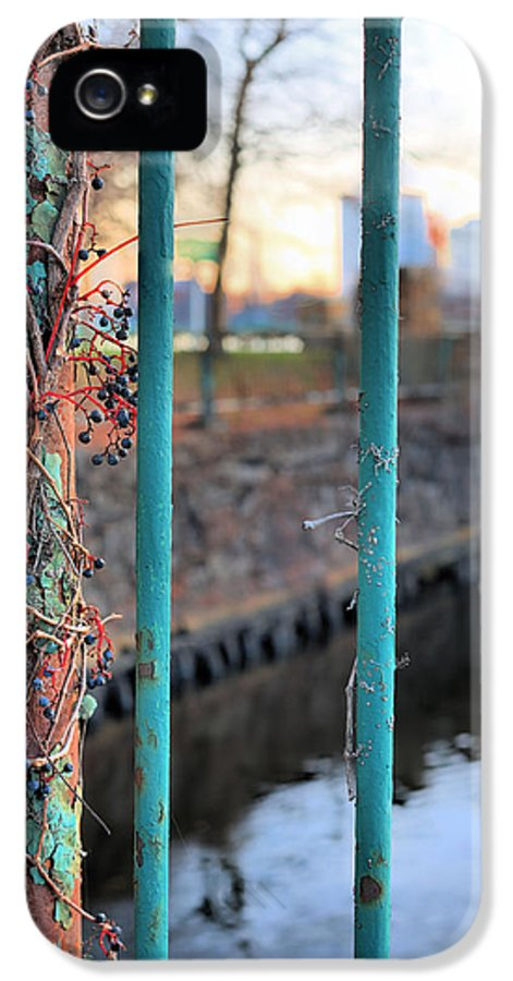 On The Fence IPhone 5 Case featuring the photograph On The Fence by JC Findley