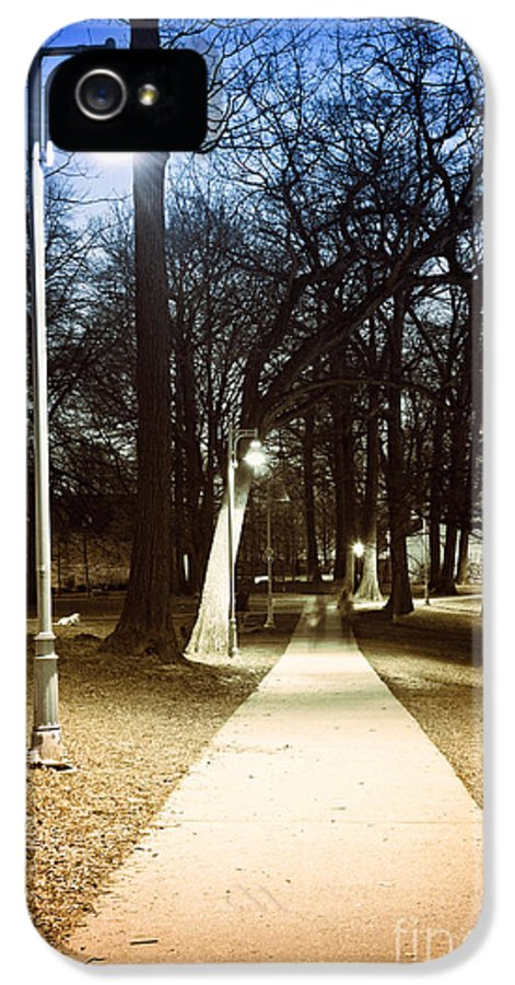 Park IPhone 5 Case featuring the photograph Park Path At Night by Elena Elisseeva