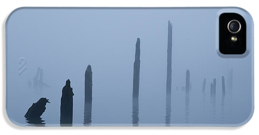 Asymmetrical IPhone 5 Case featuring the photograph Pier Pilings In Water by David Buffington