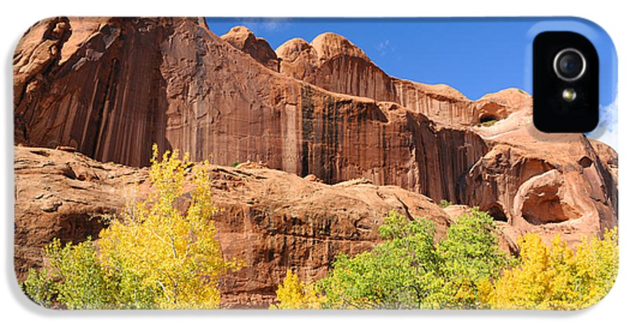 Poison IPhone 5 Case featuring the photograph Poison Spider Mesa In The Fall by Gary Whitton