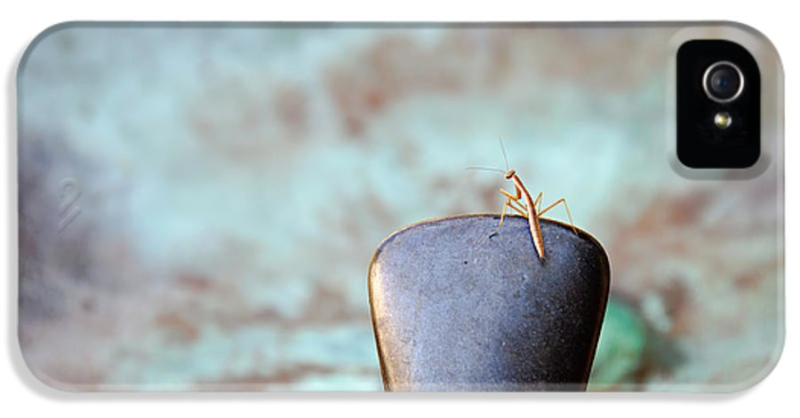 Praying Mantis IPhone 5 Case featuring the photograph Praying For Water 2 by Andee Design