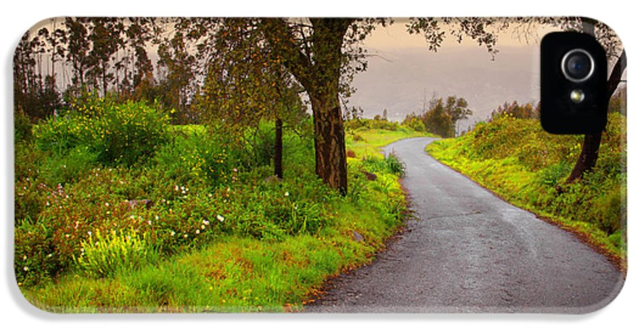 Asphalt IPhone 5 Case featuring the photograph Road On Woods by Carlos Caetano