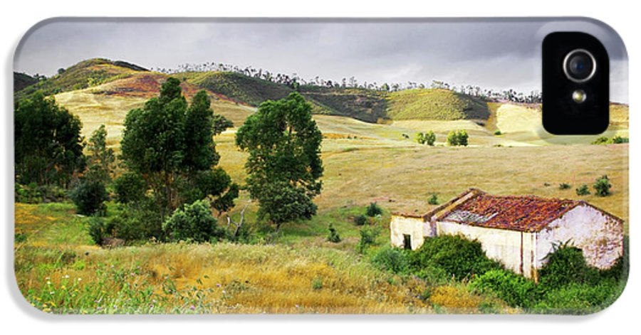 Calm IPhone 5 Case featuring the photograph Ruin In Countryside by Carlos Caetano