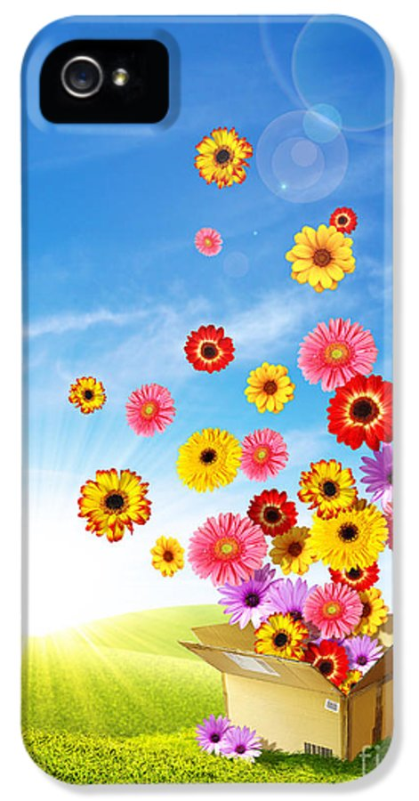 Background IPhone 5 Case featuring the photograph Spring Delivery 2 by Carlos Caetano