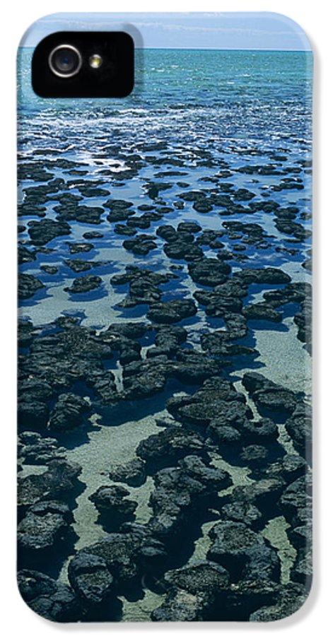 Blue-green Alga IPhone 5 Case featuring the photograph Stromatolites by Dirk Wiersma