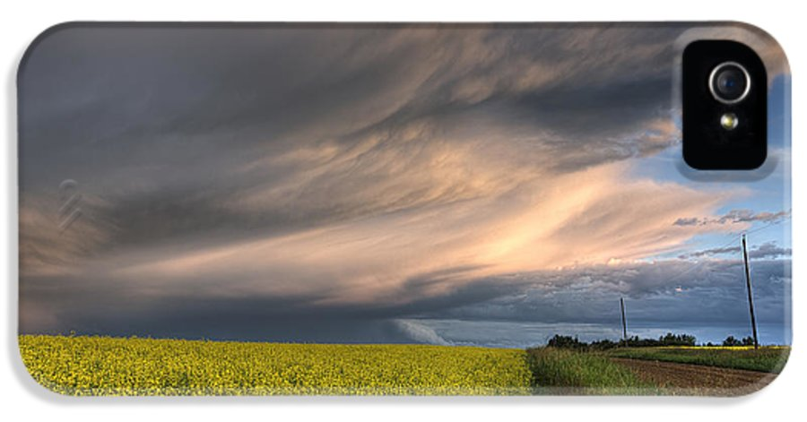 Alberta IPhone 5 Case featuring the photograph Summer Evening Storm Blowing Over Ripe by Dan Jurak