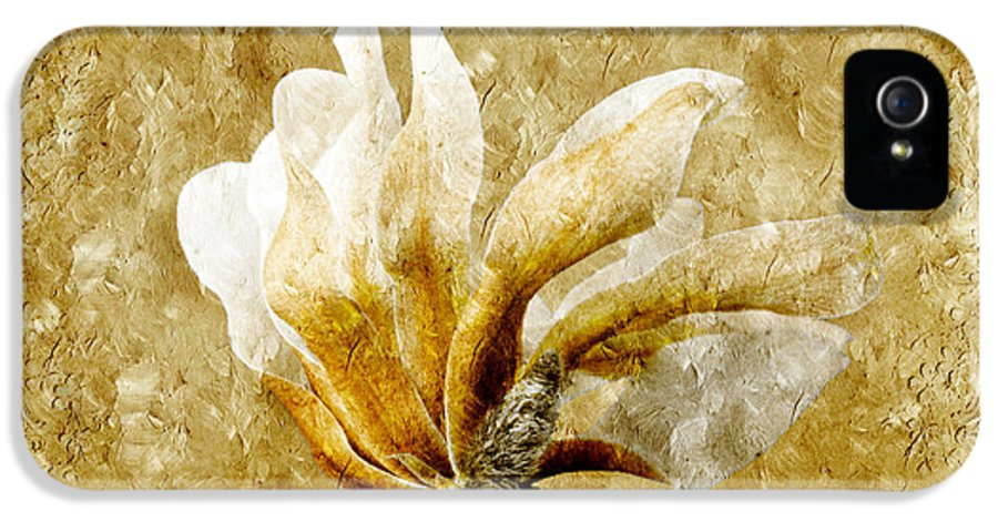 Magnolia IPhone 5 Case featuring the photograph The Golden Magnolia by Andee Design
