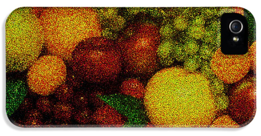 Art IPhone 5 Case featuring the pyrography Tiled Fruit by Mauro Celotti