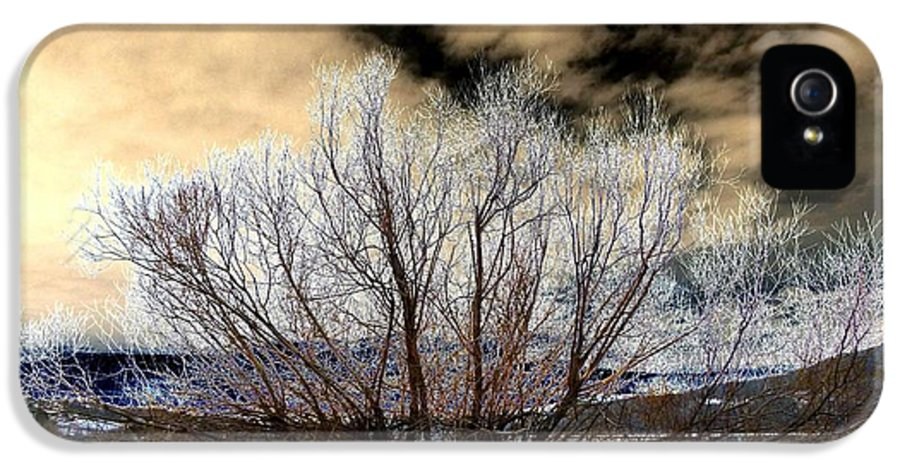 Touch Of Frost IPhone 5 Case featuring the digital art Touch Of Frost by Will Borden