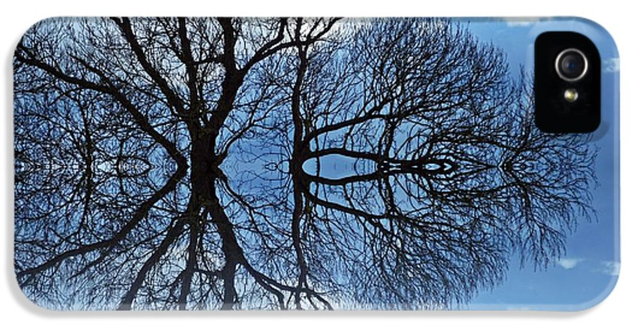 Tree IPhone 5 Case featuring the digital art Tree Of Life by Sharon Lisa Clarke