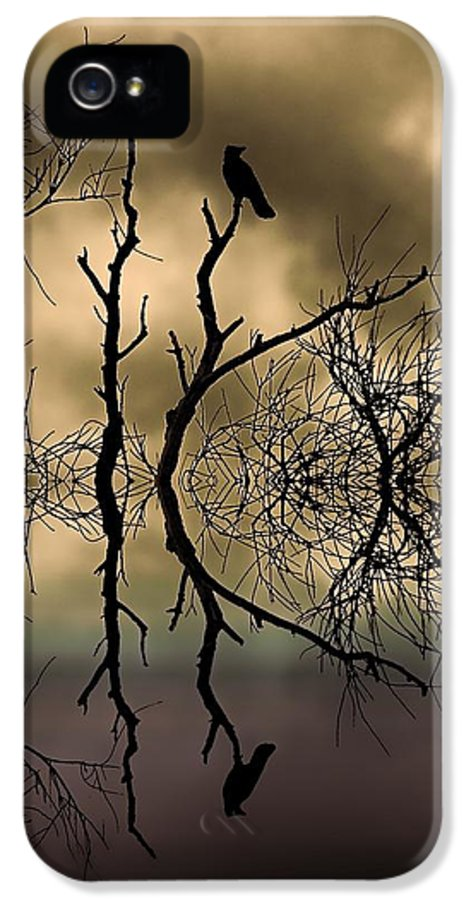 Tree IPhone 5 Case featuring the photograph Twilight by Sharon Lisa Clarke