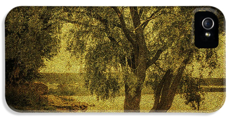 Tree IPhone 5 Case featuring the photograph Willow At The Lake. Golden Green Series by Jenny Rainbow