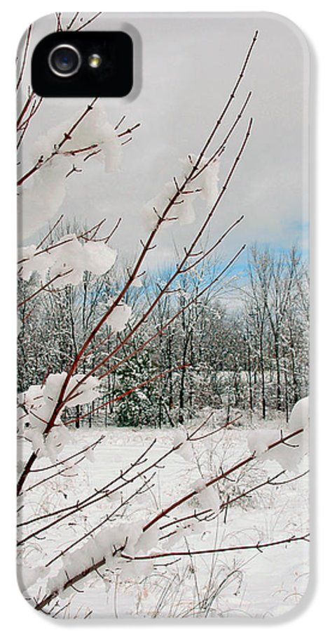 Winter Scene IPhone 5 Case featuring the photograph Winter Woods by Joann Vitali