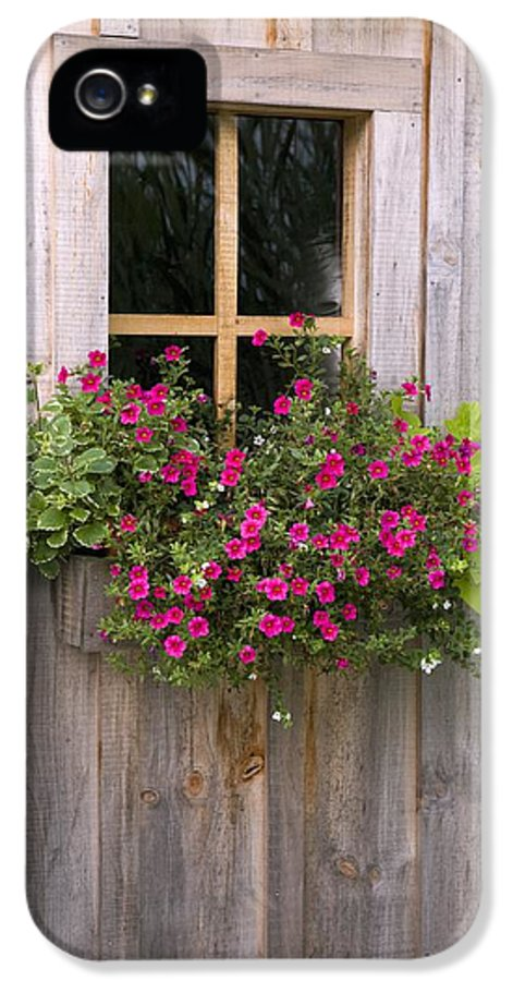 Box IPhone 5 Case featuring the photograph Wooden Shed With A Flower Box Under The by Michael Interisano