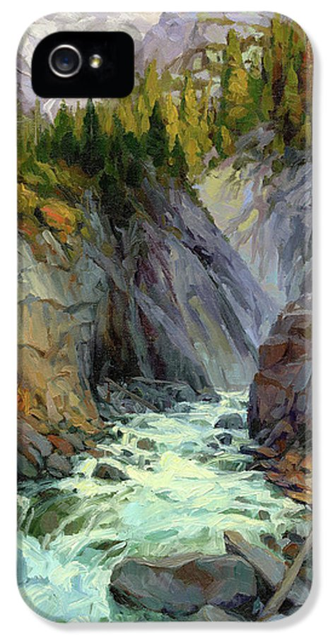 River IPhone 5 Case featuring the painting Hurricane River by Steve Henderson