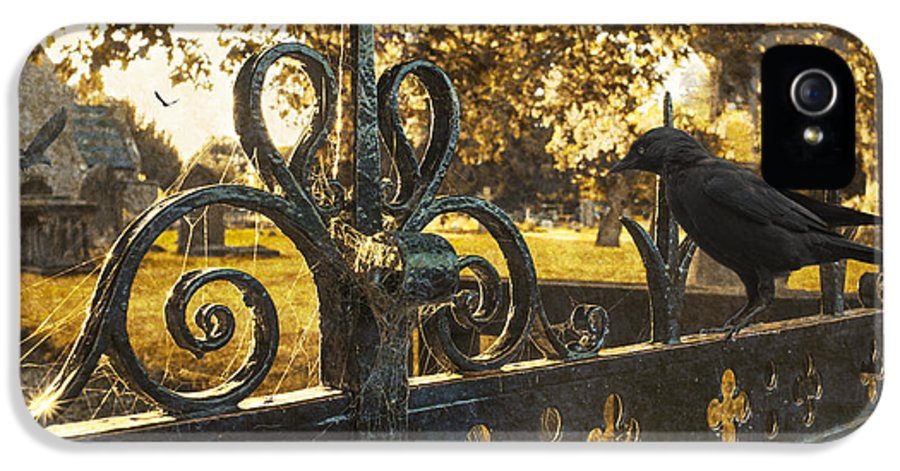 Cemetery IPhone 5 Case featuring the photograph Jackdaw On Church Gates by Amanda Elwell