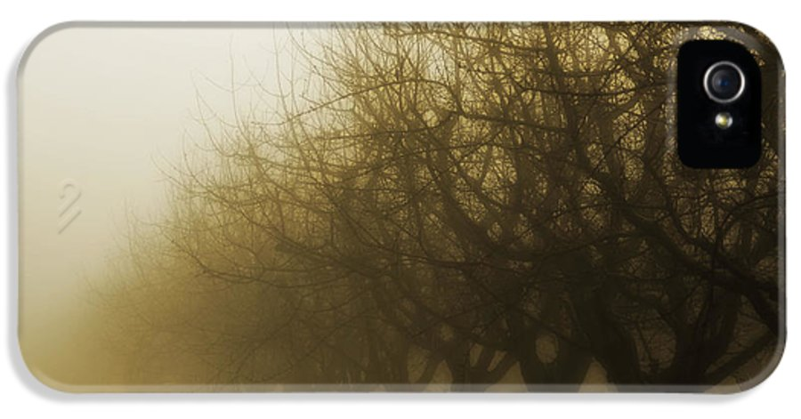 Sepia IPhone 5 Case featuring the photograph Orchard In Fog by Rebecca Cozart