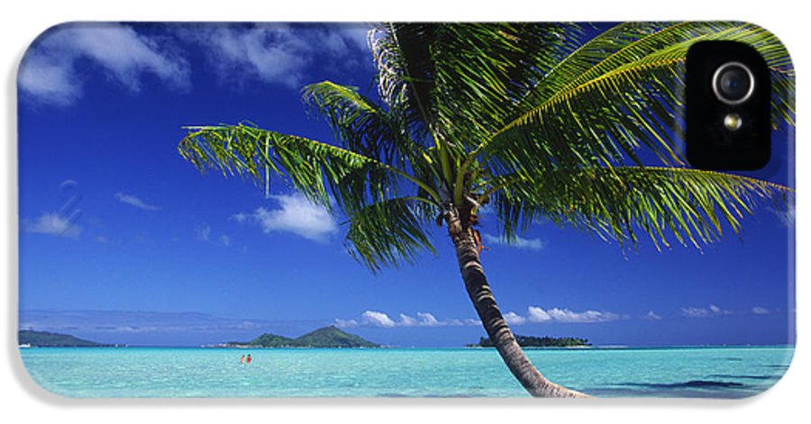 Beach IPhone 5 Case featuring the photograph Bora Bora, Palm Tree by Ron Dahlquist - Printscapes