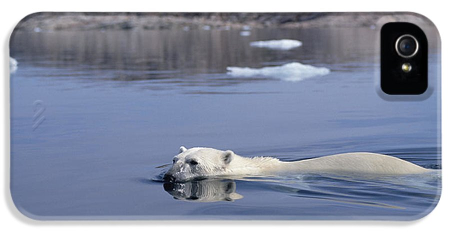 Mp IPhone 5 Case featuring the photograph Polar Bear Swimming Wager Bay Canada by Flip Nicklin