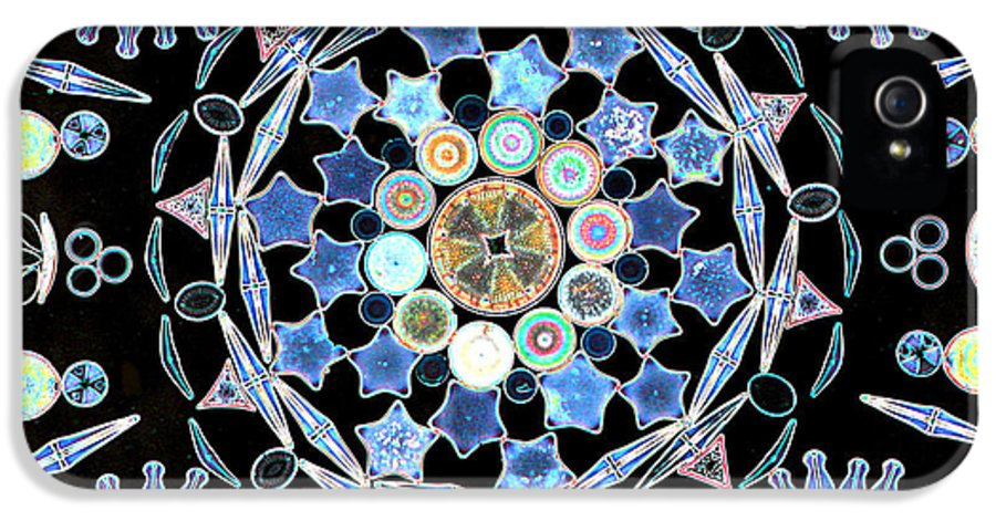 Light Microscopy IPhone 5 Case featuring the photograph Diatoms by M I Walker