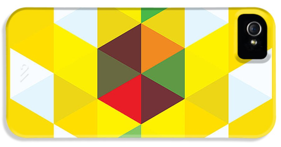Modern Art IPhone 5 / 5s Case featuring the painting Abstract Cubes by Gary Grayson