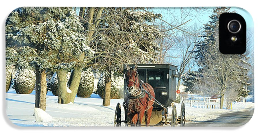 Amish IPhone 5 Case featuring the photograph Amish Winter by David Arment