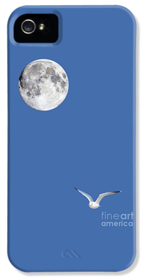 Solitude IPhone 5 Case featuring the photograph Solitude by Michael Peychich