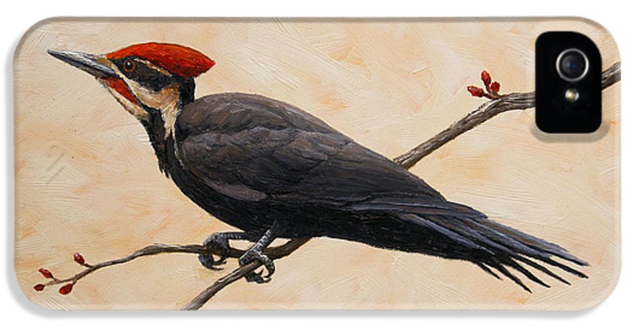 Bird IPhone 5 Case featuring the painting Pileated Woodpecker by Crista Forest