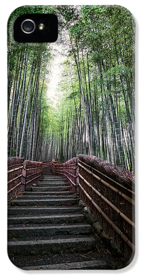 Bamboo IPhone 5 Case featuring the photograph Bamboo Forest Of Japan by Daniel Hagerman
