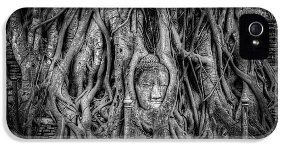 Ayutthaya IPhone 5 Case featuring the photograph Banyan Tree by Adrian Evans