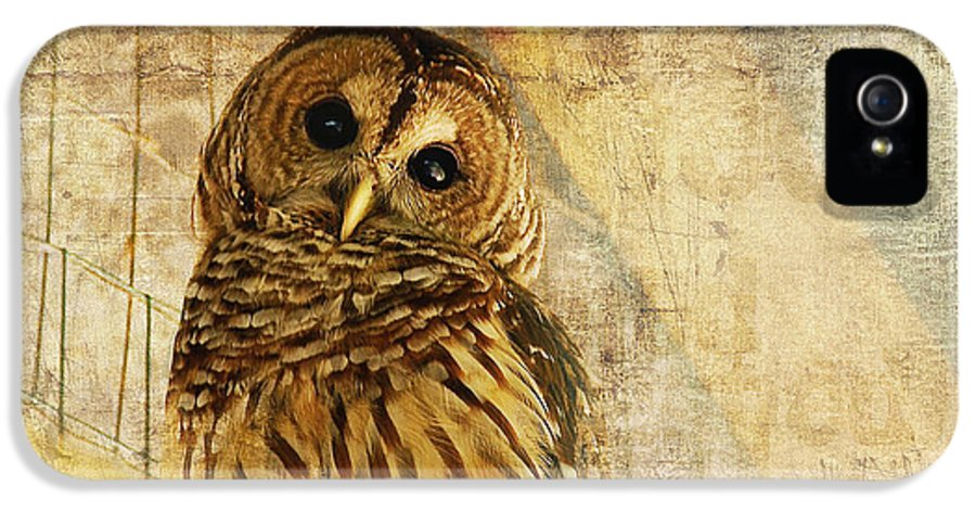 Owl IPhone 5 Case featuring the photograph Barred Owl by Lois Bryan