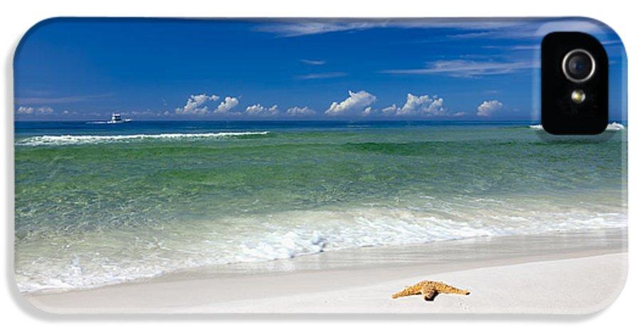 Postcard IPhone 5 Case featuring the photograph Beach Splendour by Janet Fikar