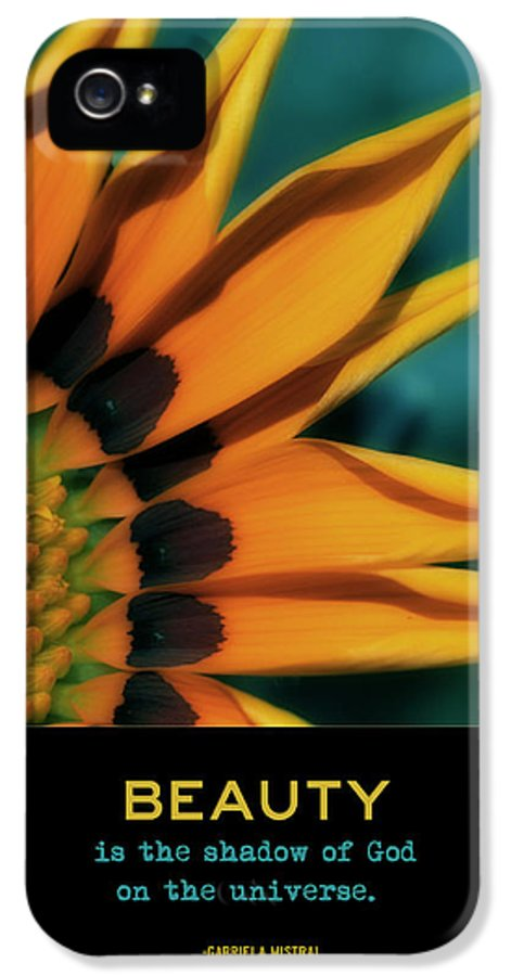 Digital Art IPhone 5 Case featuring the photograph Beauty by Bonnie Bruno