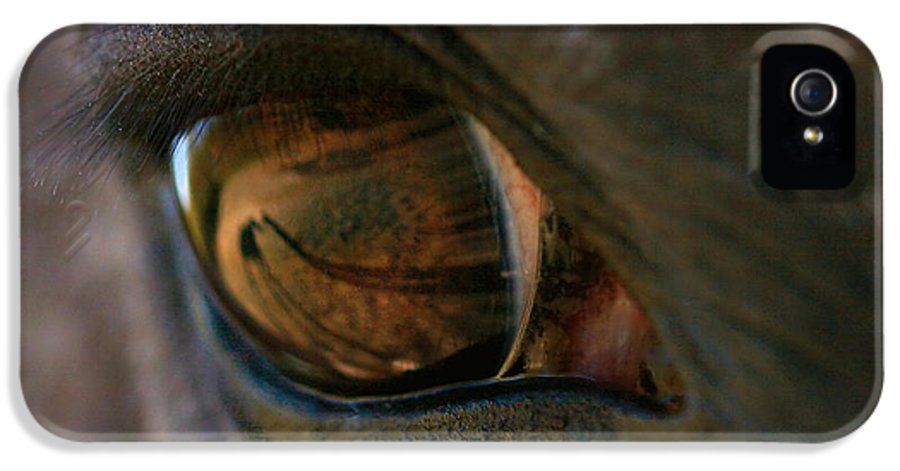 Shadow IPhone 5 Case featuring the photograph Beauty Is In The Eye Of The Beholder by Angela Rath