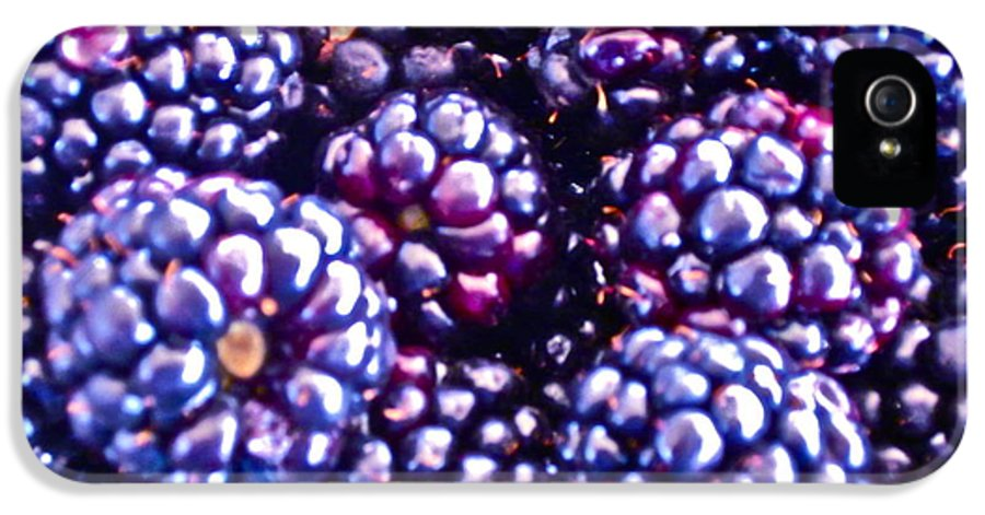 Boysenberry Photograph IPhone 5 Case featuring the photograph Big Boys by Gwyn Newcombe