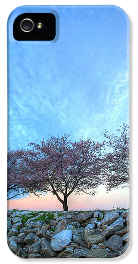 Cherry Blossoms Blossom Washington Dc Potomac River Sunrise Sunset Joint Base Anacostia Bolling Afb Alexandria Va Virginia IPhone 5 Case featuring the photograph Blossoms by JC Findley